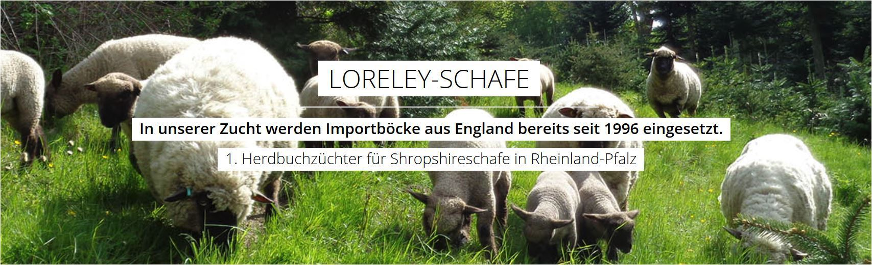 https://www.loreley-schafe.de/
